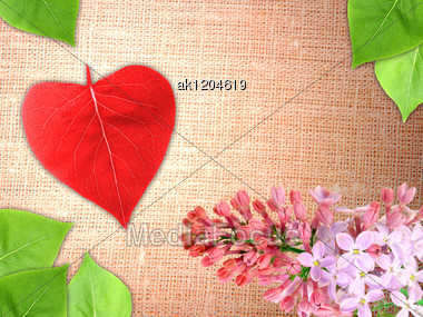 Abstract Valentine Textile Background With A Branch Flowers And Green Leaf Of Lilac And Red Heart Of Leaf-form For Your Design. Close-up. Studio Photography. Stock Photo