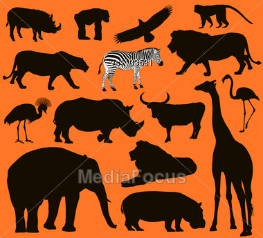 African Animals Silhouettes Set. Vector Illustration. EPS 10 Stock Photo
