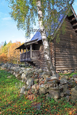 Aging Birch Near Wooden Building Stock Photo