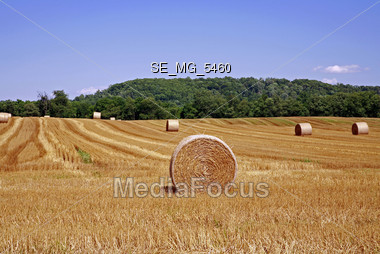 Agriculture - Field with Bales of Hay Stock Photo