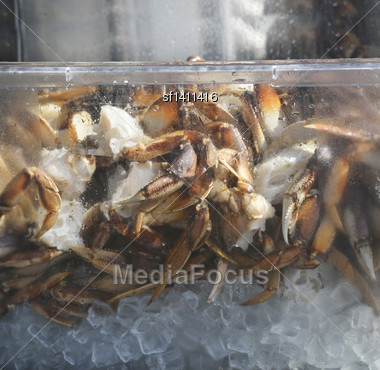 Alaskan King Crab On Ice In A Plastic Container Stock Photo