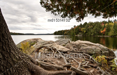 Algonquin Park Muskoka Ontario Fall Autumn Colors Stock Photo
