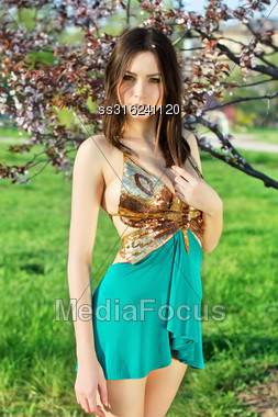 Alluring Lady Wearing Golden And Turquoise Dress Posing In The Garden Stock Photo