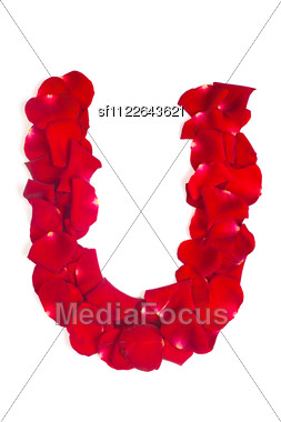Alphabet Letter U Made From Red Petals Rose Isolated Stock Photo