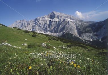 Alps Germany Stock Photo