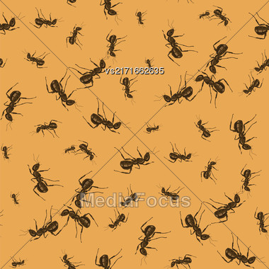 Ant Seamless Pattern On Orange Background. Insect Texture Stock Photo