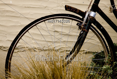Antique Bicycle Tire And Fender In Grass Stock Photo