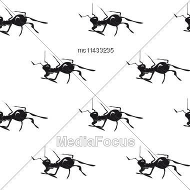 Ants. Hand Drawn Vintage Vector Seamless Pattern Stock Photo