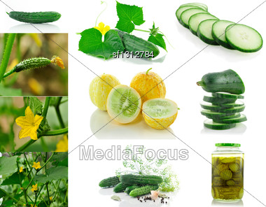 Assortment Of Fresh Cucumbers From Garden And Pickles Stock Photo