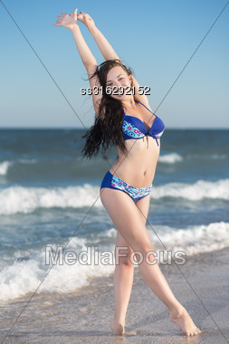 Attractive Young Brunette Posing At The Seaside Stock Photo