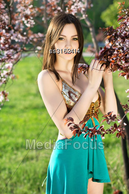 Attractive Young Caucasian Lady Touching Leaves Of The Tree Stock Photo