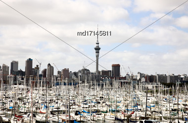 Auckland New Zealand City View Habour From Bridge Stock Photo