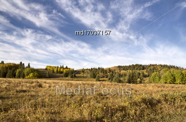 Autumn Colors Cypress Hills Canada Interprovincial Park Stock Photo