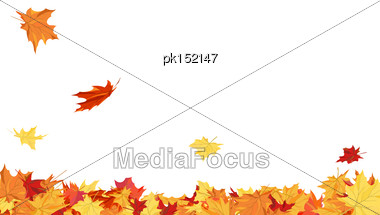 Autumn Copy-space Frame With Maple Leaves Stock Photo