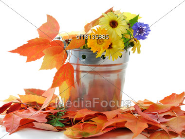 Autumn Flowers And Colorful Leaves In A Decorative Bucket Stock Photo