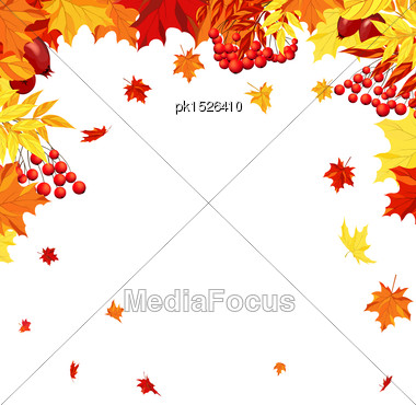 Autumn Frame With Maple, Rowan And Dog Rose Leaves And Berries Over White Background. Elegant Design With Text Space And Ideal Balanced Colors. Vector Illustration Stock Photo