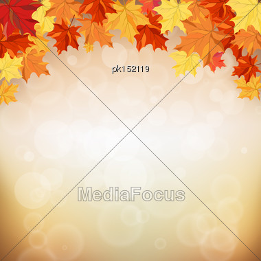 Autumn Frame With Maple Leaves Stock Photo