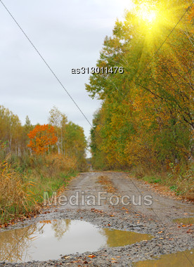 Autumn Landscape And Dirt Road With A Puddle After The Rain Stock Photo