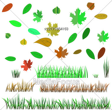 Autumn Leaves And Autumn Grass Isolated On White Background Stock Photo