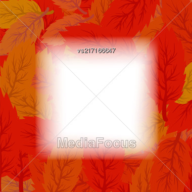 Autumn Leaves Background. Set Of Red And Orange Leaves Stock Photo