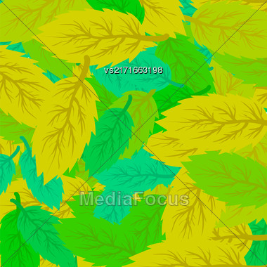 Autumn Leaves Background. Set Of Yellow And Green Leaves Stock Photo