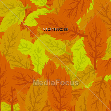 Autumn Leaves Background. Set Of Yellow And Orange Leaves Stock Photo
