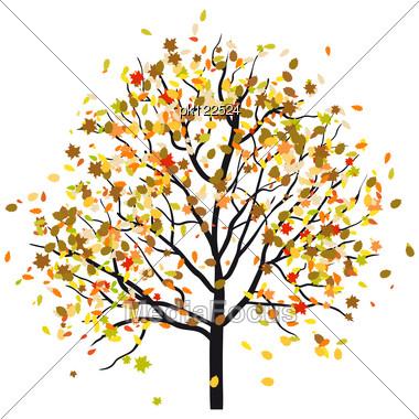 Autumn Tree With Falling Fall Tree Illustration