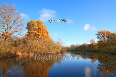 Autumn Wood On Coast River Stock Photo