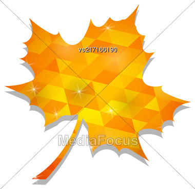 Autumn Yellow Leaf Isolated On White Background Stock Photo