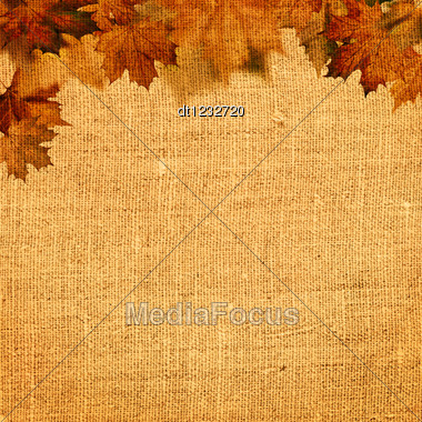 Autumnal Abstract Still Life Over Hessian Background For Your Design Stock Photo
