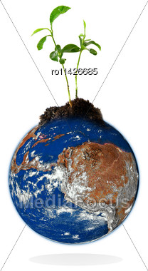 Baby Plant Growing From The Earth Over A White Background.Data Source: Nasa Stock Photo