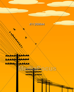 Background Illustration Wirth Birds And Telegraph Poles Silhouettes Stock Photo