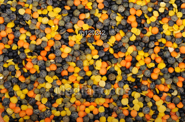 Background Of Mix Of Four Types Of Lentils Stock Photo