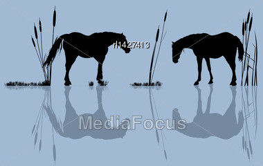 Background Romantic Illustration With Horses At The Water Stock Photo
