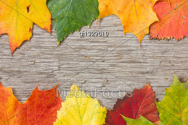 Background With Wooden Planks And Colorful Fall Leaves Stock Photo