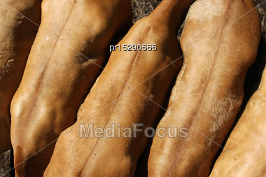 Backs Of Fattened Beef Cattle, Waiting For Sale At Auction Stock Photo