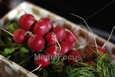 Basket With Fresh Small Red Radishes And Dill Against Blurred Background Stock Photo