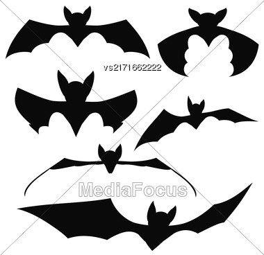 Bats Silhouettes. Set Of Black Bats Isolated On White Background Stock Photo
