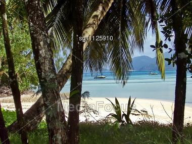 Beach on Seychelles Stock Photo