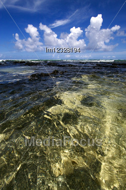 Beach And Stone In Ile Du Cerfs Mauritius Stock Photo