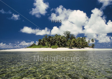 Beaches and Palm Trees - Maldives Islands Stock Photo