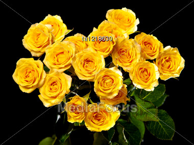 Beautiful Bouquet Of Yellow Roses Stock Photo