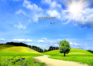 Beautiful Field With Green Grass And Blue Sky Stock Photo ZO12054200