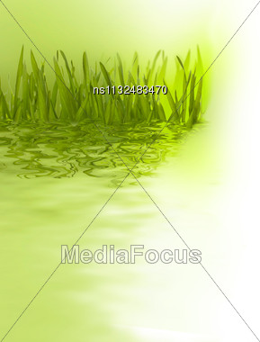 Beautiful Nature Background. Grass Over Blurred Green Backdrop Stock Photo