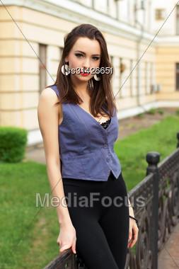 Beautiful Young Lady Posing Near The Metallic Fence Stock Photo