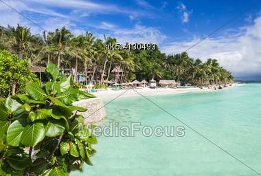 Beauty Beach With Coconut Palms On The Blue Sky Background Stock Photo