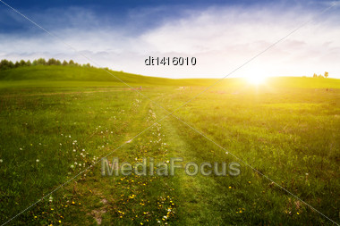 Beauty Evening On The Meadow With Country Lane, Environmental Backgrounds Stock Photo
