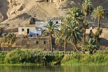 The Beauty Of The Oasis On The Banks Of The Nile Stock Photo