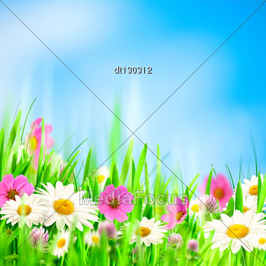 Beauty Summer Backgrounds For Your Design Stock Photo