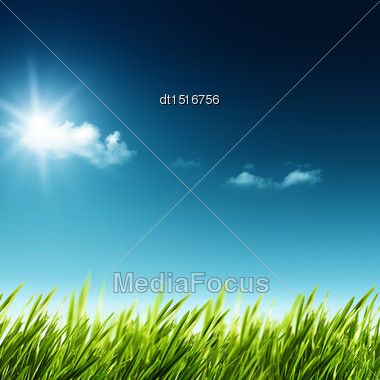 Beauty Summer Day. Abstract Natural Landscape With Green Grass And Blue Skies Stock Photo